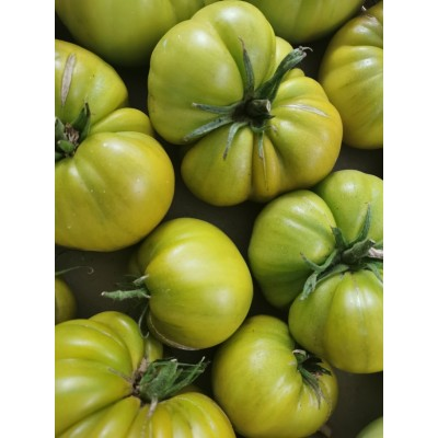 Tomates anciennes Ever...