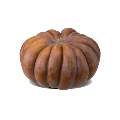 Courge muscade • Environ 1Kg